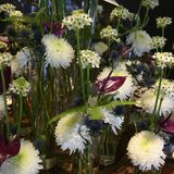 White winter flower dream with Chrysanthemum, Star of Bethlehem Flower, Anturia, Fern, Thistle, beautiful Flower Arrangement. Beautiful winter flower bouquet stock photo
