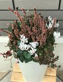 Beautiful winter flower in white vase bucket Royalty Free Stock Photos