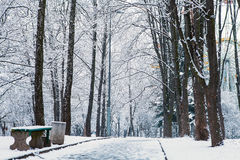 Beautiful winter Royalty Free Stock Images