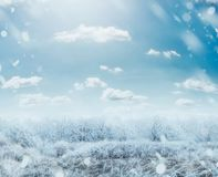 Beautiful winter frosty day landscape with snow trees and sky Stock Image