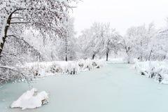 Beautiful Winter frozen lake-  Sofia,Bulgaria Stock Photography