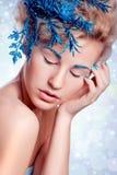 Beautiful Winter Girl Stock Image