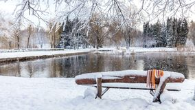 Beautiful winter greeting card with slow motion snowfall First snow in the city park with ducks on an icy pond and a bench covered. With snow stock footage