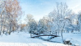Beautiful winter greeting card with slow motion snowfall First snow in the city park with trees under fresh snow at sunrise. Bridge on a sunny day in the stock footage