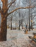 Beautiful winter idyll, snowy day. Photo of shadow park and trees , beautiful white snow on winter day, winter idyll stock photo