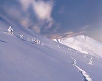 Beautiful winter landscape Royalty Free Stock Image