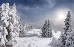 Beautiful winter landscape Royalty Free Stock Photos