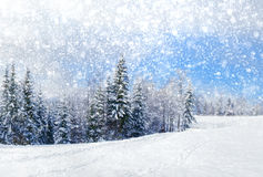 Beautiful winter landscape stock photo