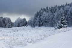 Beautiful winter landscape. Royalty Free Stock Images