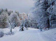 Beautiful winter landscape. Royalty Free Stock Photos
