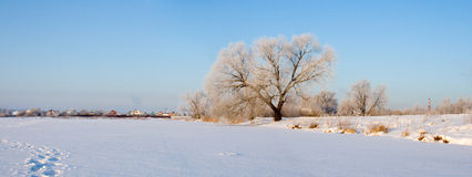 Beautiful winter landscape. Royalty Free Stock Image