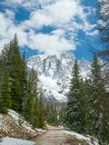 Beautiful winter landscape of Alpine mountains. Pine trees with dolomites in the background Stock Image