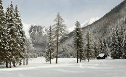 Beautiful winter landscape at Antholz Lake, Italian Alps, South Tirol. Royalty Free Stock Photo