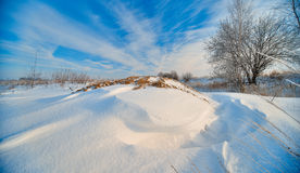 Beautiful winter landscape with blue sky Stock Images