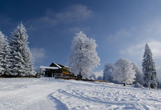 Beautiful winter landscape with chalet Stock Images