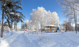 Beautiful winter landscape in city park Royalty Free Stock Photography