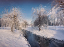 Beautiful winter landscape in the city park Stock Photo