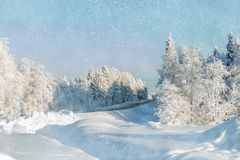 Beautiful winter landscape, in a field with snow-covered tall grass. stock images