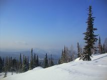 Beautiful winter landscape-forest, coniferous trees, mountain top, snow stock images