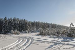 Beautiful winter landscape in the forest. stock photos