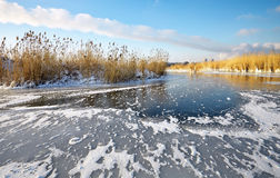 Beautiful winter landscape with frozen lake Stock Images