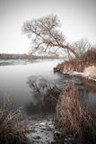 Beautiful winter landscape with frozen lake. vintage Royalty Free Stock Image