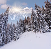 Beautiful winter landscape in high mountains Stock Photography