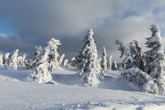 Beautiful winter landscape Krkonos on a sunny day. Winter ridges of the Krkonose Mountains. Trees covered with frost. Stock Photography