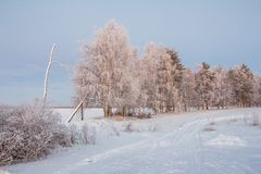 Beautiful Winter Landscape in Lapland,Finland. Winter landscape in Lapland,Finland Royalty Free Stock Photos