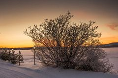 Beautiful Winter Landscape in Lapland,Finland. Winter landscape at sunset in Lapland,Finland Royalty Free Stock Image