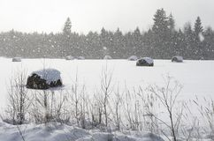 Beautiful winter landscape with lots of falling snowflakes. Beautiful winter landscape with rolls of hay and lots of falling snowflakes illuminated by the sun stock images