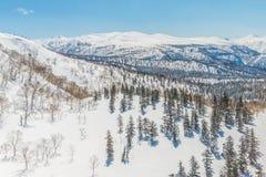 Beautiful Winter landscape Stock Photography