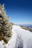 Beautiful winter landscape in the mountain. Empty path Royalty Free Stock Photos