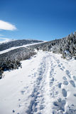 Beautiful winter landscape in the mountain. Empty path Royalty Free Stock Image