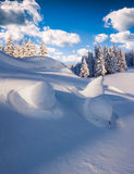 Beautiful winter landscape in mountain forest. Royalty Free Stock Images