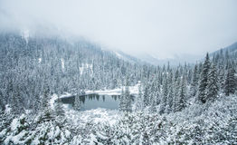 A beautiful winter landscape with a mountain lake in blizzard. Royalty Free Stock Image