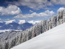 Beautiful winter landscape in mountains Stock Image