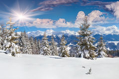 Beautiful winter landscape in mountains Royalty Free Stock Photography