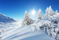 Beautiful winter landscape in the mountains Royalty Free Stock Photos