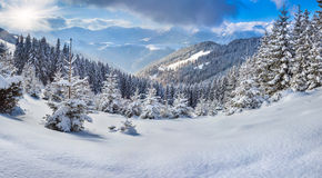 Beautiful winter landscape in the mountains. Stock Photo