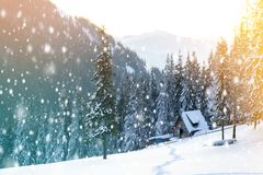 Beautiful winter landscape in the mountains with falling snow an royalty free stock photography