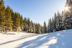 Beautiful winter landscape in the mountains. Happy New Year cele Royalty Free Stock Photos