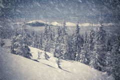 Beautiful winter landscape in the mountains. Stock Photos