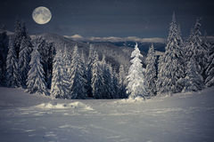 Beautiful winter landscape in the mountains at night with stars Stock Images