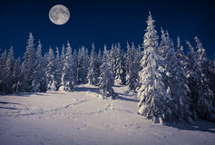 Beautiful winter landscape in mountains at night with stars Stock Photo