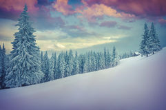 Beautiful winter landscape in the mountains. Royalty Free Stock Photography