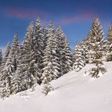 Beautiful winter landscape in the mountains Royalty Free Stock Photo