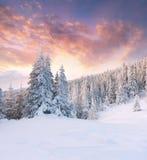 Beautiful winter landscape in mountains. Sunrise Stock Image