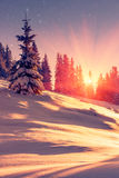 Beautiful winter landscape in mountains. View of snow-covered conifer trees and snowflakes at sunrise. Merry Christmas and happy N Royalty Free Stock Photos
