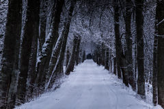 A beautiful winter landscape in nordic Europe Royalty Free Stock Photo